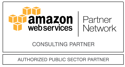 Public Sector partner